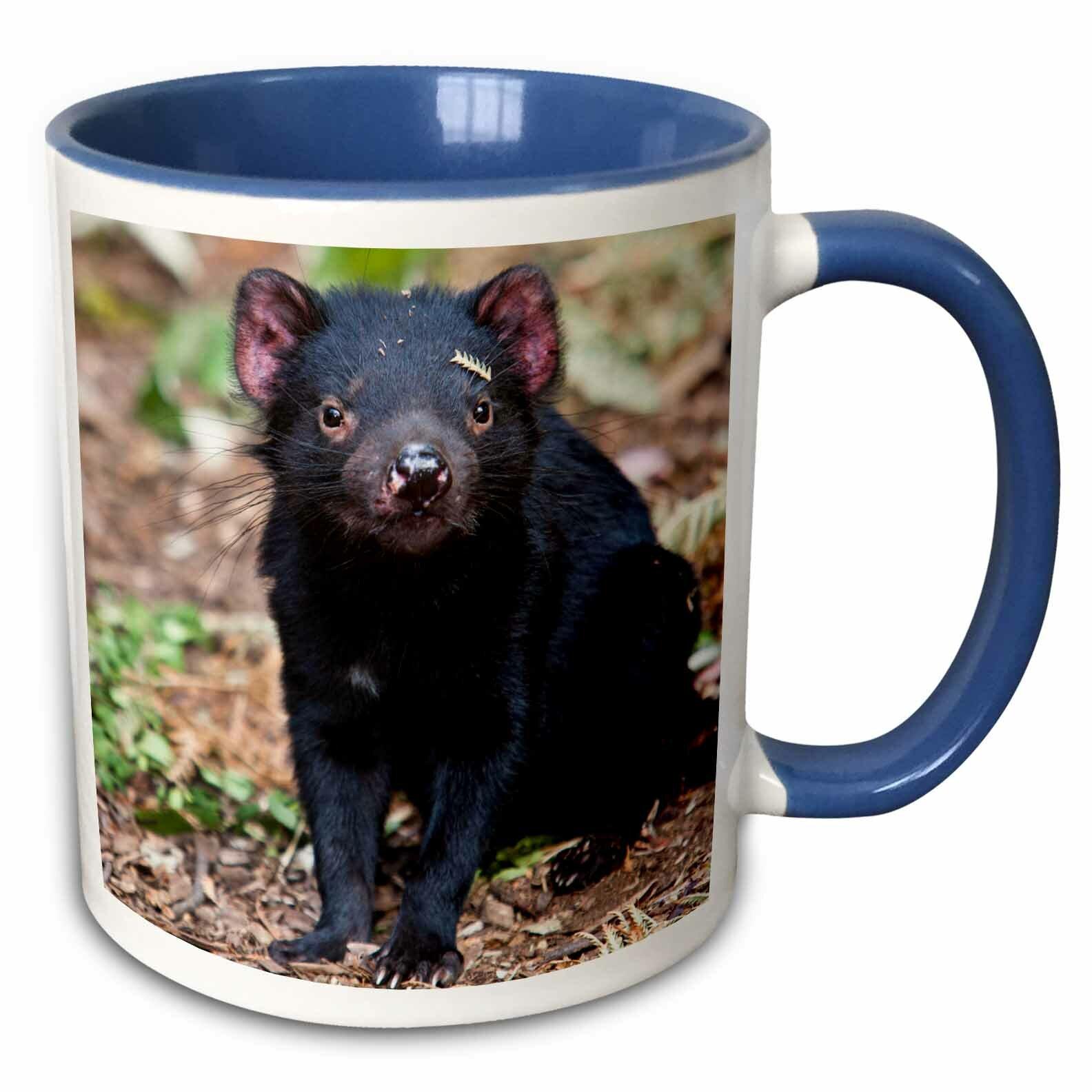 Bloomsbury Market Hikari Tasmanian Devil Wildlife Tasmania Australia Martin Zwick Coffee Mug Wayfair