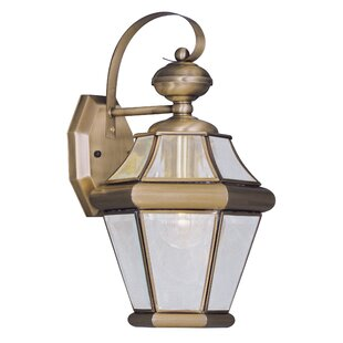 Violetta 1-Light Outdoor Wall Lantern By Darby Home Co Outdoor Lighting
