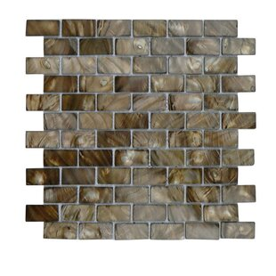Review Glass Mosaic Tile in Brown/Gray by QDI Surfaces