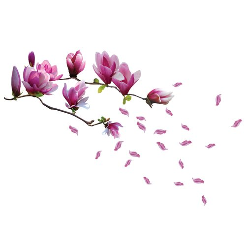 Wandtattoo Magnolie-Blumen 17 Stories Packung: 1 Packung | Dekoration > Wandtattoos > Wandtattoos | 17 Stories