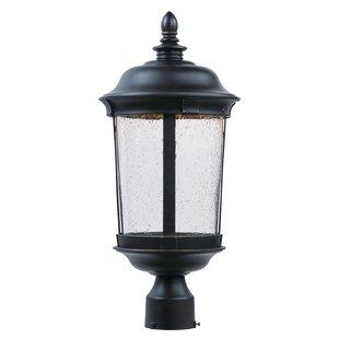 Sandusky Outdoor 1-Light LED Lantern Head by Darby Home Co