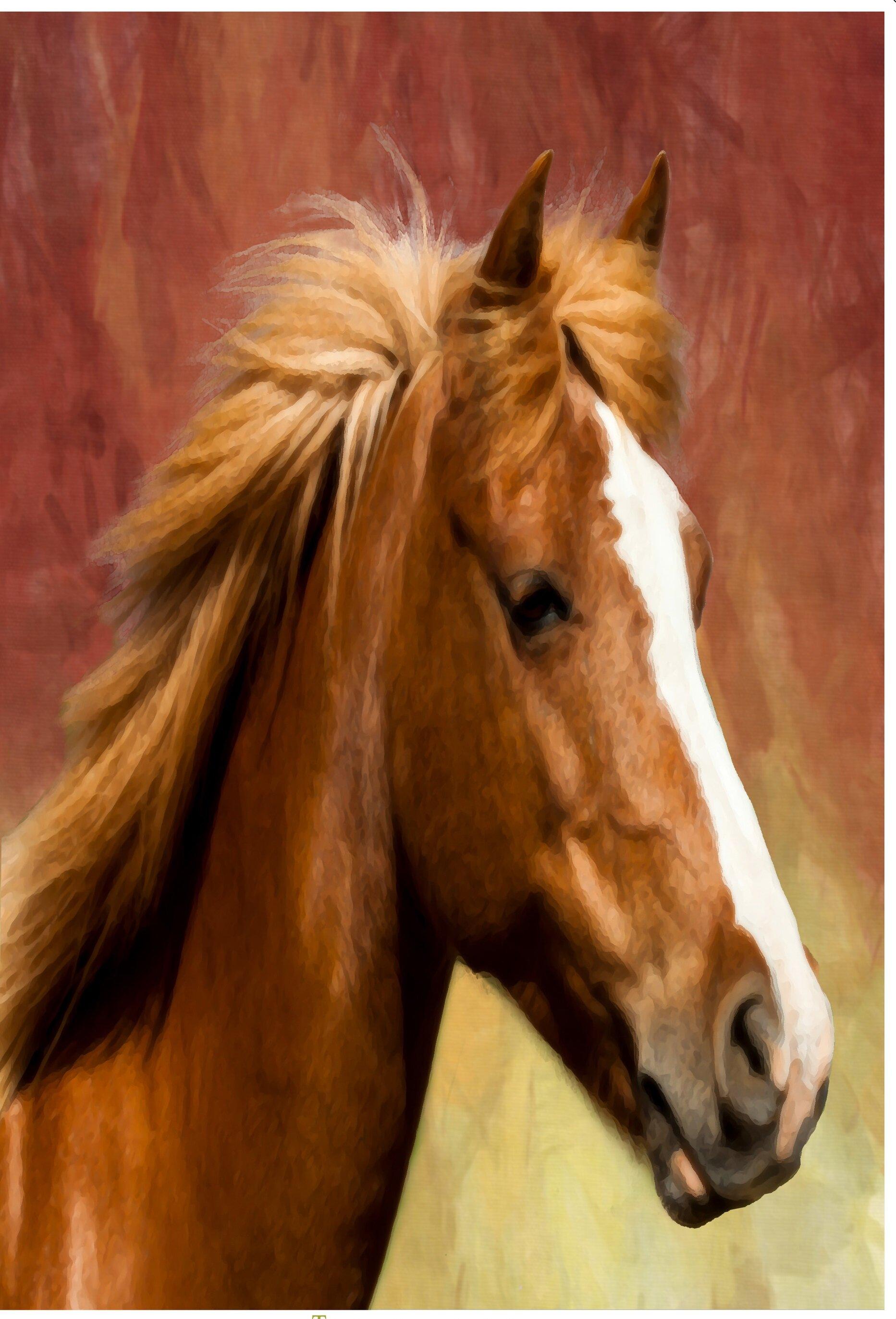 Bon The Cranford Group Painted Sunset Horse Garden Flag | Wayfair