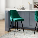 Colchester Bar & Counter Stool by Everly Quinn