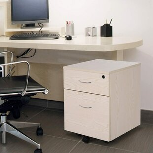 Abbygayl 2 Drawer Filing Cabinet By 17 Stories