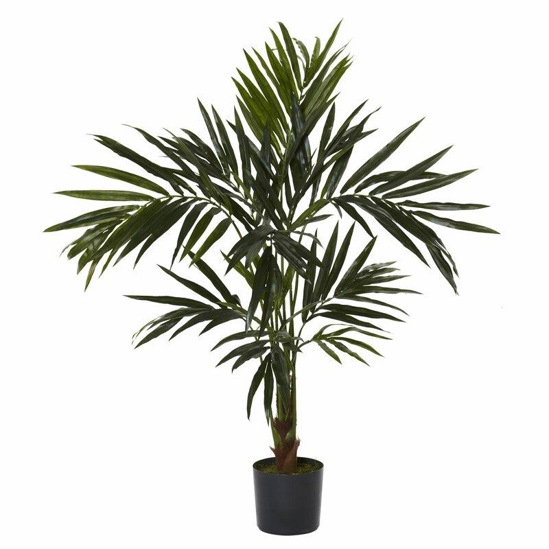 entracing palm tree type house plant. Kentia Silk Tree Nearly Natural  Reviews Wayfair