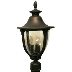Affordable Phillipstown 3-Light Lantern Head By Alcott Hill