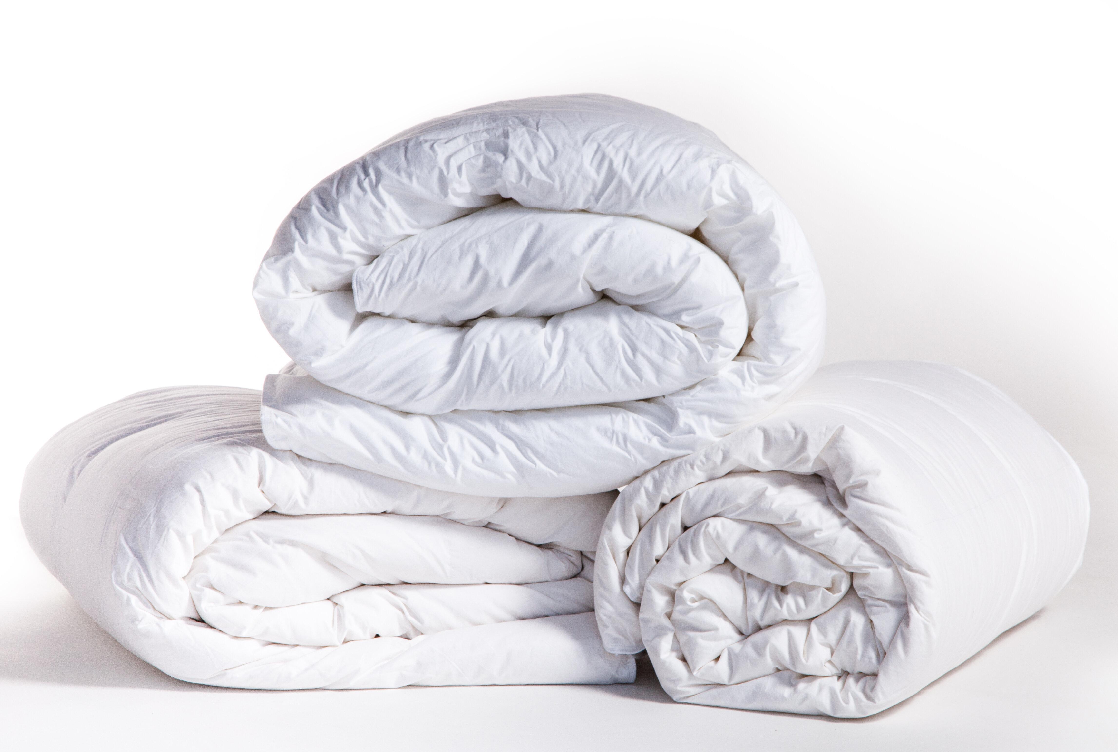 duvets all comforters duvet parachute season alternative and pillows down collections lp insert
