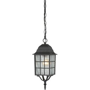 Buy luxury Gillian 1-Light Outdoor Hanging Lantern By Charlton Home
