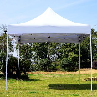 10 Ft. W x 10 Ft. D Metal Pop-Up Canopy by Outsunny