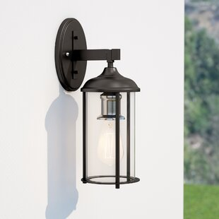 Affordable Marshall 1-Light Outdoor Wall Lantern By Trent Austin Design