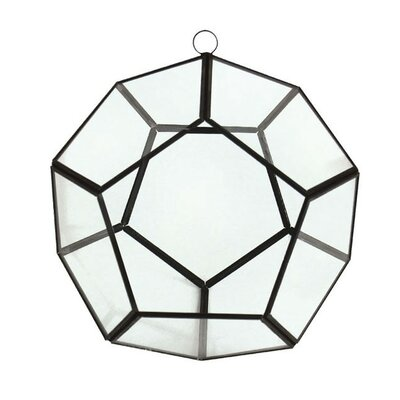 Glass Terrarium CYSExcel