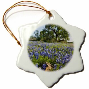 Texas Ornament Wayfair