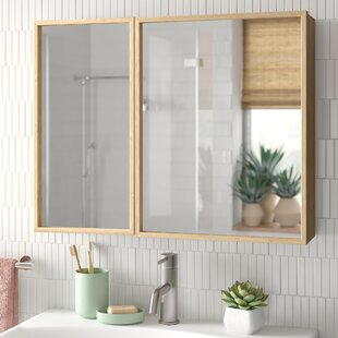 Drury 65 X 51cm Wall Mounted Mirror Cabinet By Natur Pur