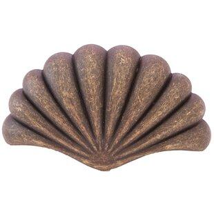 Catalina Clam Shell 3