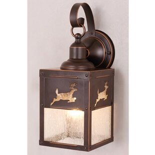 Loon Peak Josefina 1-Light Outdoor Wall Lantern