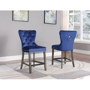 Thatcham 25 Bar Stool (Set of 2) by Everly Quinn