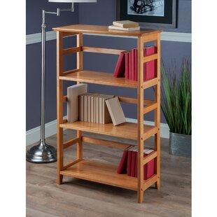 Hilderbrand Standard Bookcase