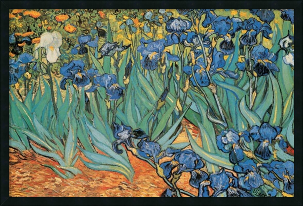 Amanti art garden of irises by vincent van gogh framed painting garden of irises by vincent van gogh framed painting print reviewsmspy