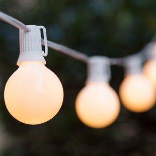 Wintergreen Lighting Opaque Steady 25 Light String Light