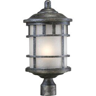 Hartnell Outdoor 1-Light Lantern Head By Breakwater Bay