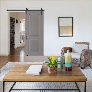 Genial Paneled Wood Primed Barn Door