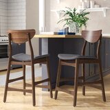 Laceyville 24 Counter Stool (Set of 2) by Wade Logan®