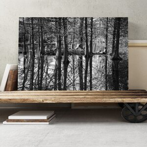 Landscape Black and White Forest and Lake Photographic Print on Canvas