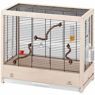 Orchard Bird Cage with Removable Tray by Metro Lane