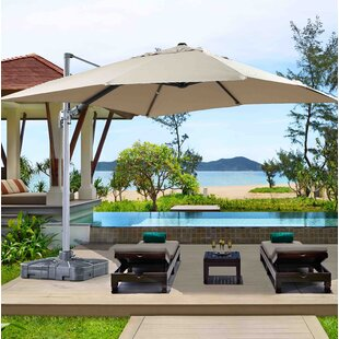 Latitude Run Dorcheer Patio 10' Square Cantilever Umbrella