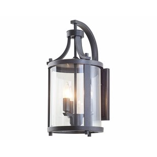 Niagara 3-Light Outdoor Wall Lantern by DVI