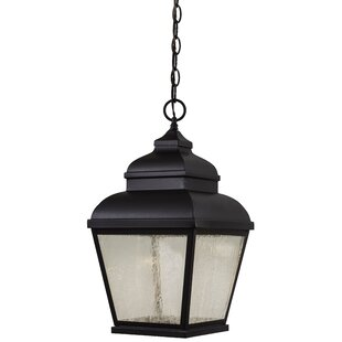 Darby Home Co Dorchester 1-Light Outdoor Hanging Lantern
