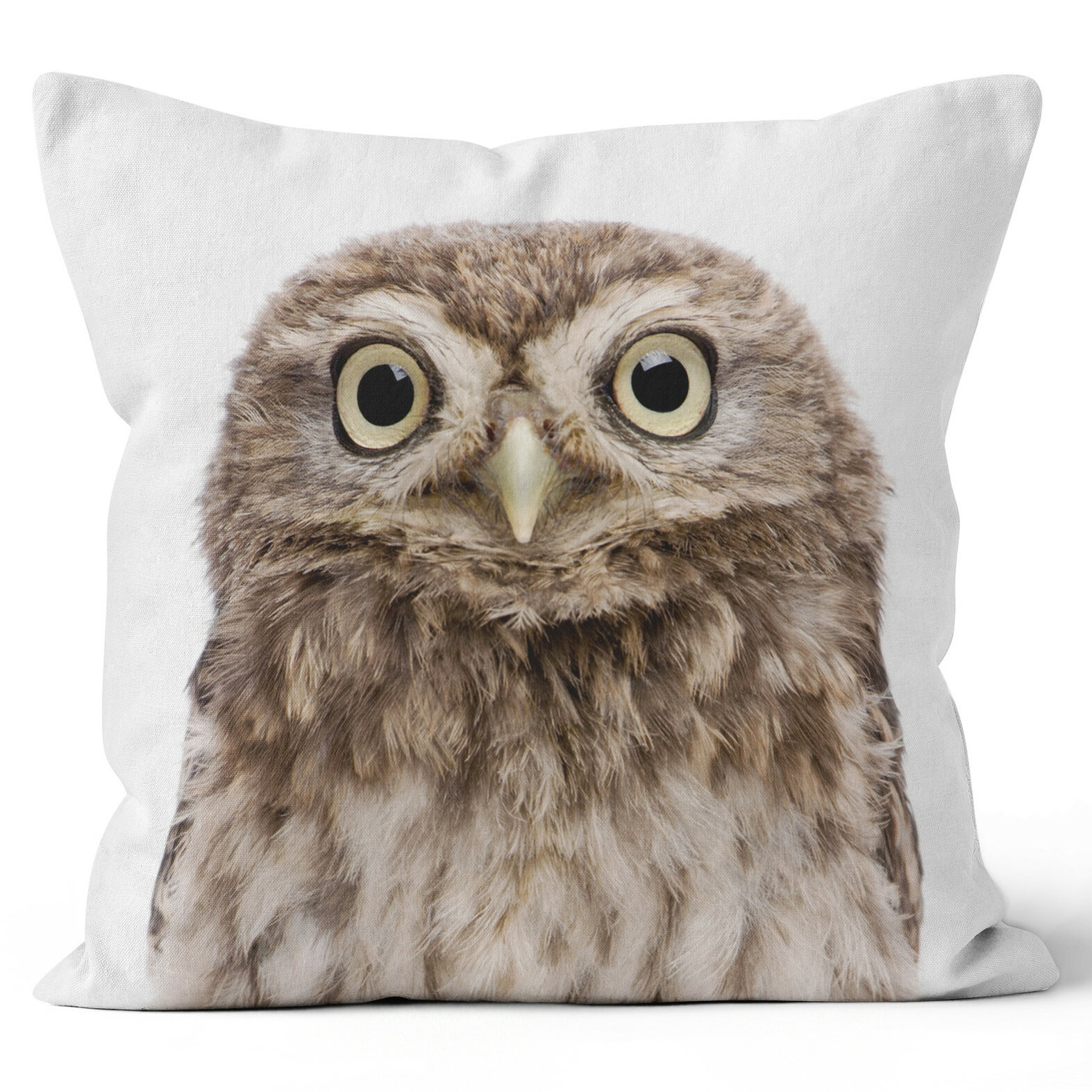 Ziya Blue Owl Throw Pillow Wayfair