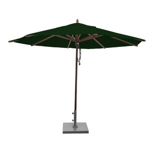 Shepley 11' Market Umbrella