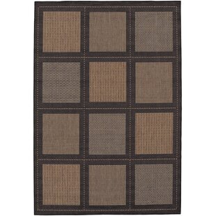 Zachary Cocoa Indoor/Outdoor Area Rug