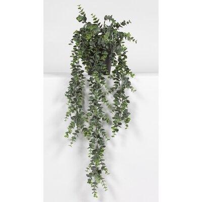 Kunstpflanze Eukalyptus im Topf | Dekoration > Dekopflanzen | Wildon Home
