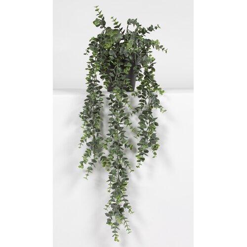 Kunstpflanze Eukalyptus im Topf Alwyn Home | Dekoration > Dekopflanzen | Alwyn Home