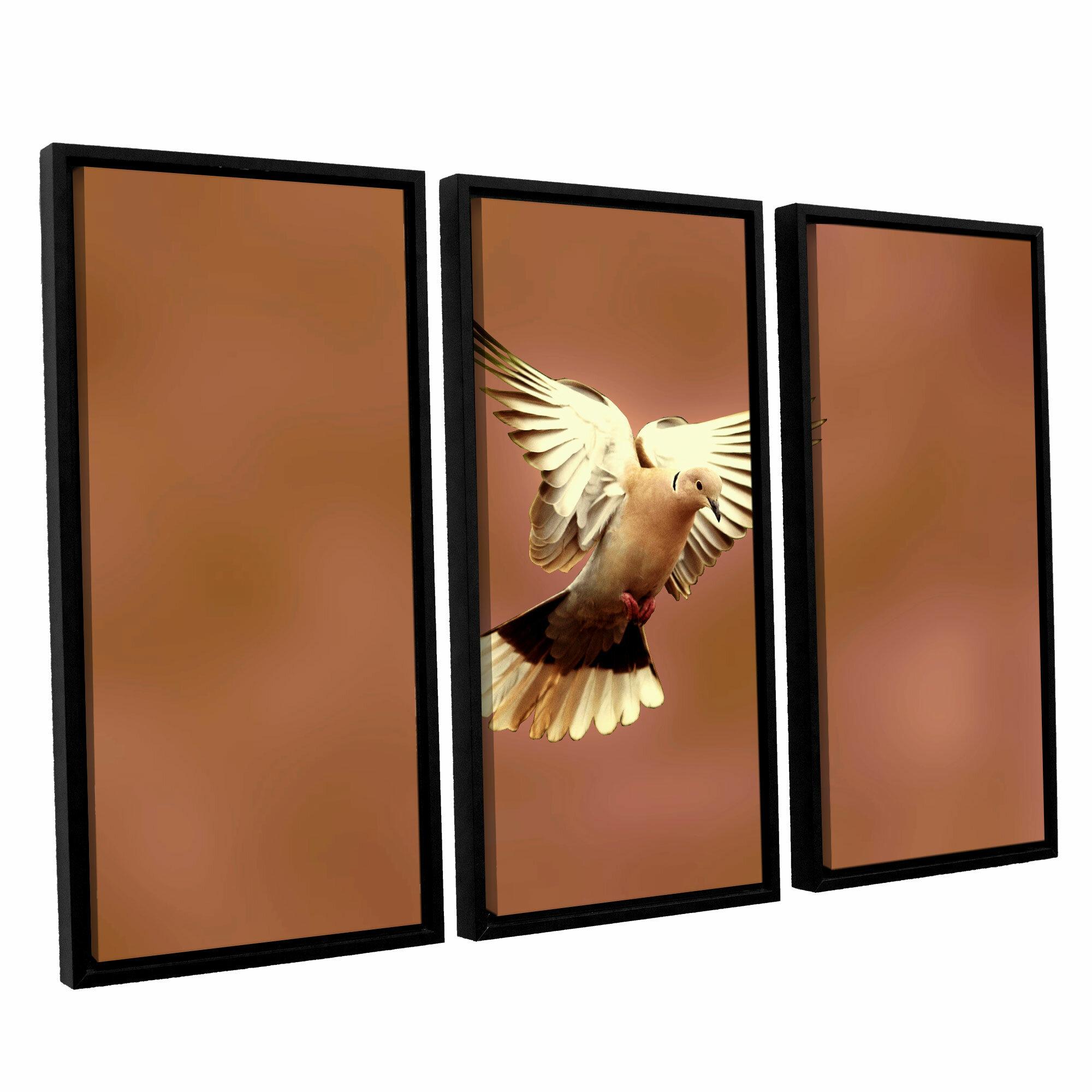 Artwall Pinkdaove1 By Lindsey Janich 3 Piece Framed Photographic Print On Canvas Set Wayfair