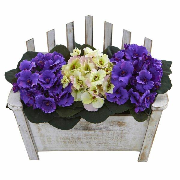Red Barrel Studio African Violet Floral Arrangement In Planter Wayfair
