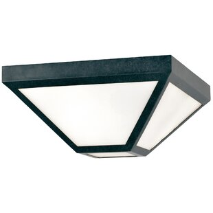 Hankerson 2-Light Outdoor Flush Mount