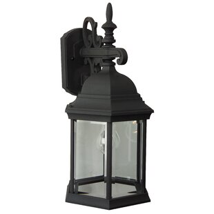 Big Save Frederica 1-Light Outdoor Wall Lantern By Breakwater Bay