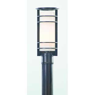 Theodore Lantern Head by Darby Home Co