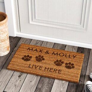 Spring Coir Doormat Wayfair