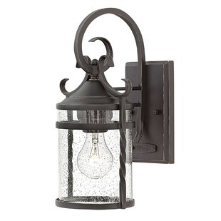 Affordable Carlyle 1-Light Outdoor Wall Lantern By Fleur De Lis Living
