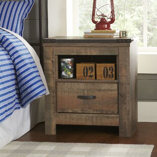 Great choice Tyrel 1 Drawer Nightstand By Viv + Rae