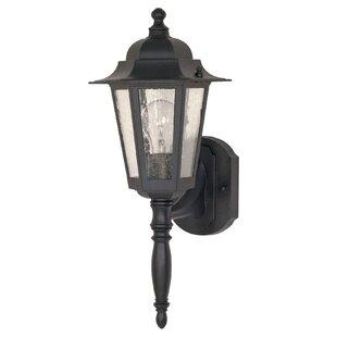 Mayer Outdoor Wall Lantern by Alcott Hill