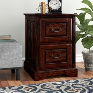 Darby Home Co Appleby 2-Drawer Vertical F..