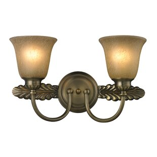 Best Reviews Wilmoth 2-Light Vanity Light By Fleur De Lis Living