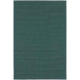 Kailani Trellis Navy/Green Indoor/Outdoor Area Rug