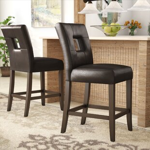 Oakely 24 Bar Stool (Set of 2) Winston Porter