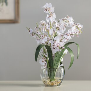 Famous White Orchid Arrangements | Wayfair ZD79